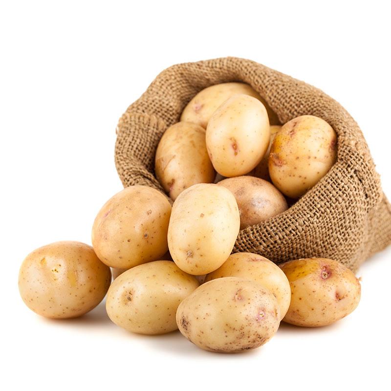 【包邮】陕西特产新鲜土豆2.5kg 洋芋马铃薯蔬菜现挖