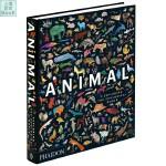 Animal 动物:探索动物学的世界 英文原版