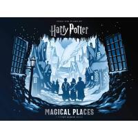 现货 哈利波特 魔法圣地 纸质场景书 英文原版 Harry Potter: Magical Places: A Pap