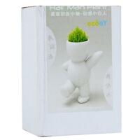 办公室装饰品 桌面绿植 创意礼物 室内办公桌面摆件 绿植超Q动感小白人 娃娃植物新奇
