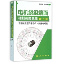 电机绕组端面模拟彩图总集(第1分册三相常规系列电动机高压电动机)