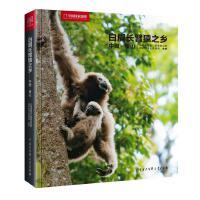 中国国家地理-白眉长臂猿之乡――中国・保山