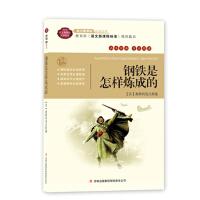 全面展现世界文学名著精粹:钢铁是怎样炼成的(互动阅读)系列