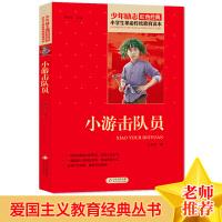 小游击队员 小学生革命传统教育读本 红色经典