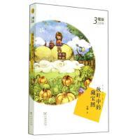 秋叶中的藏宝图(魔锁四部曲)