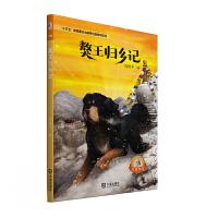 大白鲸原创幻想儿童文学优秀作品・獒王归乡记