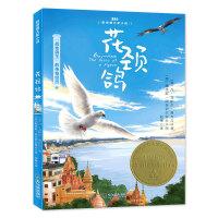 """森林鱼童书・花颈鸽(""""战地鸽王""""的传奇经历)"""