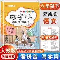 练字帖六年级下册 人教版小学生语文看拼音写词语字帖