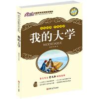 大悦读升级版 我的大学 高尔基人生三部曲之三 语文新课标必读丛书