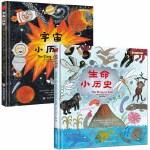 万物小历史(英国自然历史博物馆专家监制,入选英国4-7岁儿童推荐书目)