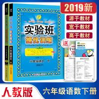 实验班提优训练六年级下册语文数人教版同步练习册