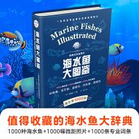 海水鱼大图鉴