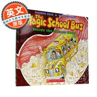 英文原版童书 The Magic School Bus Inside the Human Body 神奇校车系列・图画