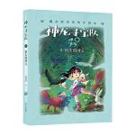 神龙寻宝队――藏在国宝里的中国史(1)消失的国宝