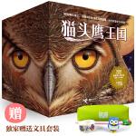 猫头鹰王国全集(15册,专享猫头鹰文具套装)