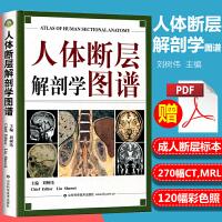 医学书 人体断层解剖学图谱 全彩色 刘树伟 主编 山东科学技术出版社