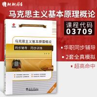现货包邮 正版自考辅导3709 03709马克思主义基本原理概论 配套2015年版教材卫兴华高教社