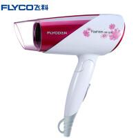 飞科(FLYCO)电吹风 FH6651吹风机 1600W负离子可折叠电吹风机
