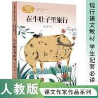 在牛肚子里的旅行 三年级上册 张之路著 统编版语文教材配套阅读 课外 课文作家作品系列