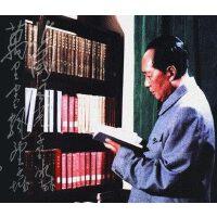 正版现货 毛泽东读书集成 中央文献出版社 1893-1976全259卷16开