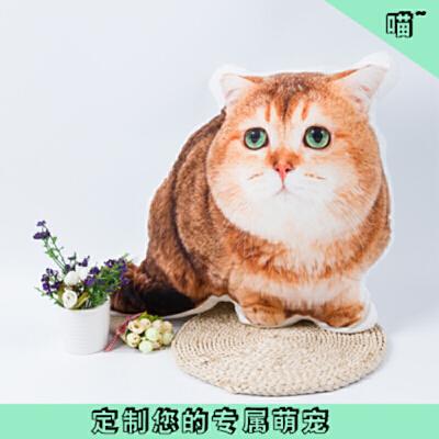 diy抱枕3d照片定做宠物纪念枕头猫咪狗异形来图g创意礼物可印