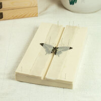 昆虫标本制作工具间距可调节昆虫展翅板蝴蝶标本展翅板标本制作工具EVA可开票