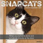 【预订】Snapcats 2020 Wall Calendar 9781549207884