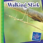 【预订】Walking Stick
