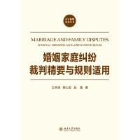 婚姻家庭纠纷裁判精要与规则适用
