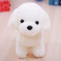 毛绒玩具狗狗白色可爱小泰迪布娃娃公仔玩偶小狗儿童生日礼物女生