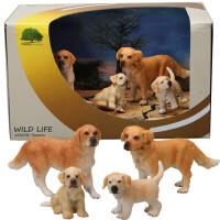 哈巴狗小狗动物仿真模型玩具套装实心塑料静态野生生物模型礼盒装