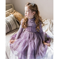 女童连衣裙秋冬蕾丝网纱裙长袖儿童裙子
