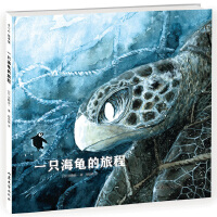 一只海龟的旅程