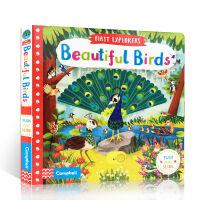 【全店300减100】英文原版绘本First Explorers: Beautiful Birds 美丽的鸟儿 机关操作