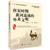 唐宋时代黄河流域的外来文明