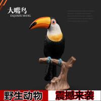 野生动物世界 大嘴鸟鹦鹉男女孩礼物儿童实心仿真动物园玩具模型
