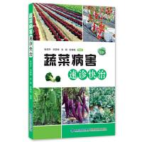 正版蔬菜病害速诊快治家庭种植书籍蔬菜常见病类型知识大全书籍病虫害防治方法教程书籍蔬菜种植者阅读参考书籍