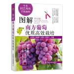 图解南方葡萄优质高效栽培