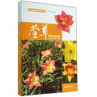 萱草(精)/北京植物园花园丛书