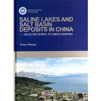 中国盐湖和盐盆地沉积研究(英文版)