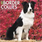 【预订】Just Border Collies 2020 Wall Calendar (Dog Breed Calen