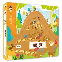 动物王国创意形状书―蚁穴