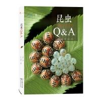 昆虫Q&A(自然观察) 朱耀沂 著,卢耽 摄影・绘图 商务印书馆