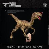 动物恐龙模型窃蛋龙 偷蛋龙儿童实心仿真恐龙玩具套装