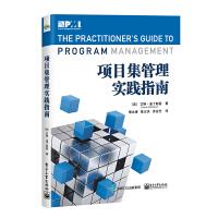 项目集管理实践指南