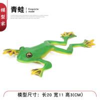 青蛙癞蛤蟆树蛙田鸡蟾蜍模型玩具儿童仿真池塘动物模型摆件