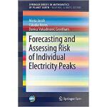 【预订】Forecasting and Assessing Risk of Individual Electricit