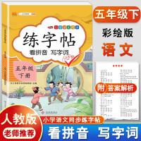 练字帖五年级下册 人教版小学生语文看拼音写词语字帖