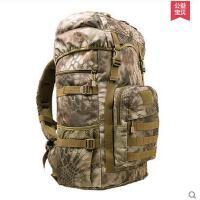 男女旅行背包大容量50L双肩包运动书包户外登山包迷彩包徒步背囊 可礼品卡支付