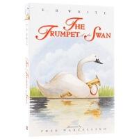 正版 吹小号的天鹅 英文原版 The Trumpet of the Swan 关于成长的寓言 EB 怀特三部曲 儿童文学